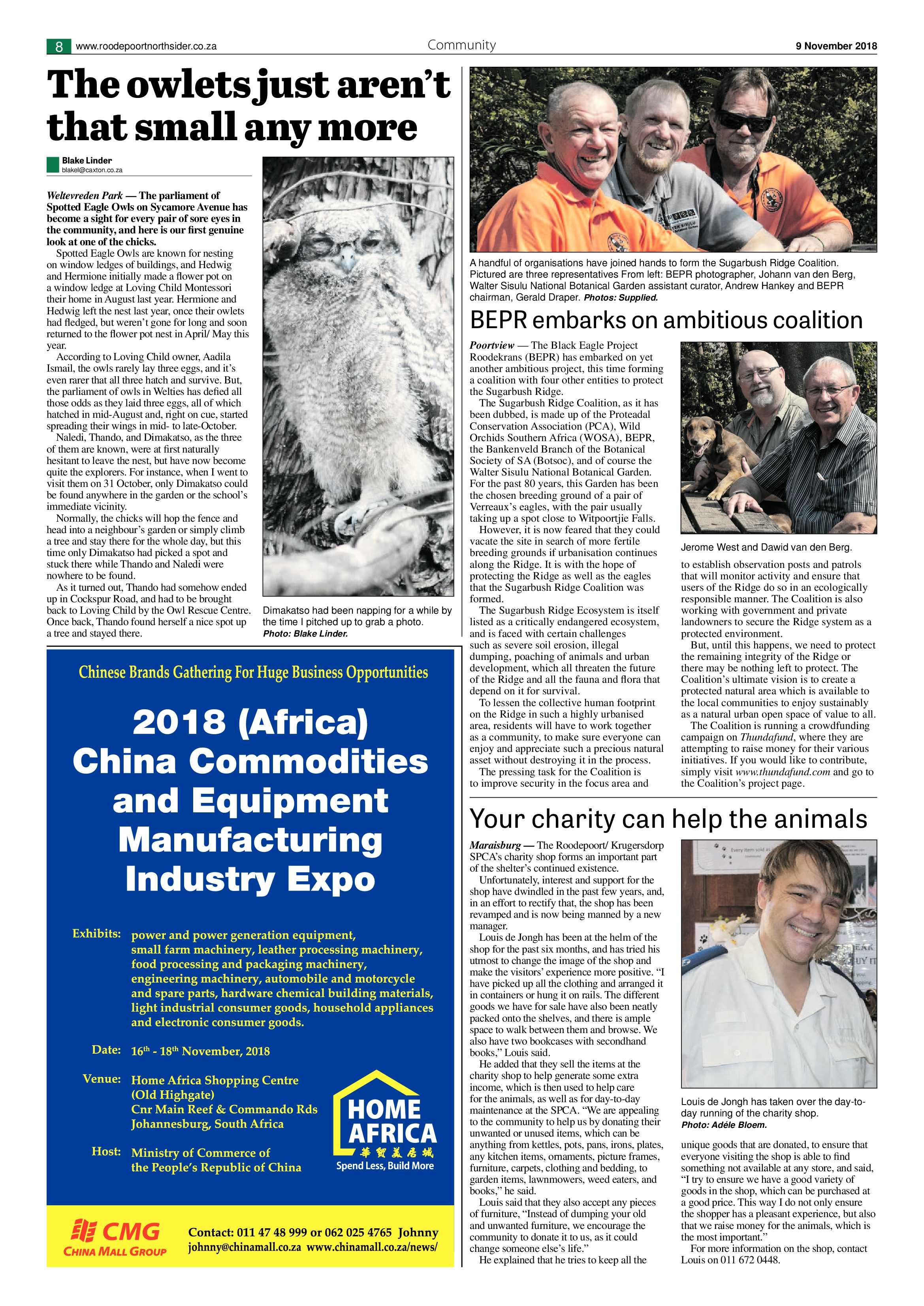 roodepoort-northsider-9-november-2018-epapers-page-8